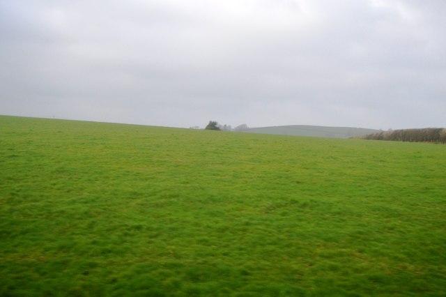 South Devon pasture
