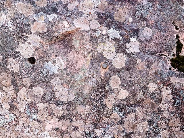 Rivet benchmark on a Torridonian boulder