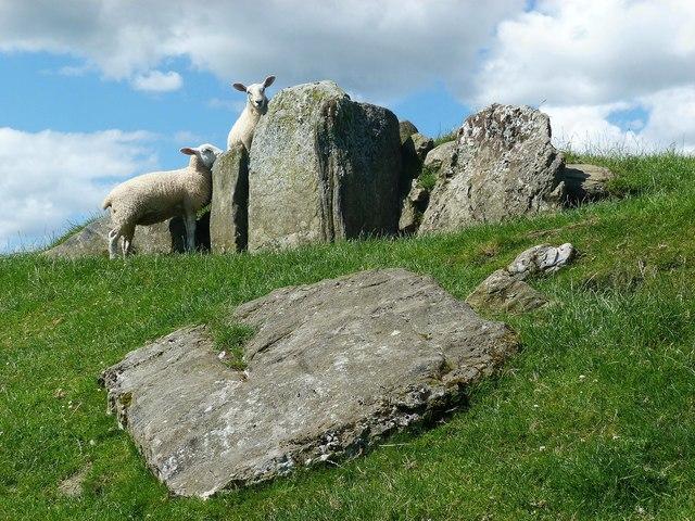 Michael's Grave - Isle of Bute