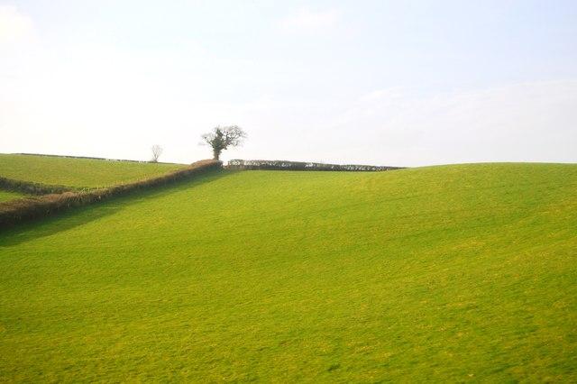 South Devon Scenery