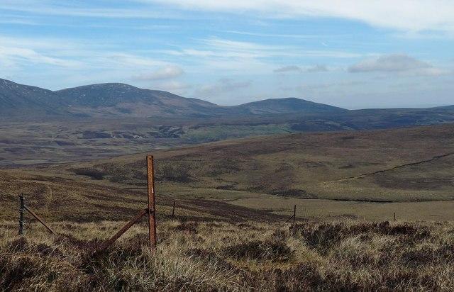Fence posts below Cnoc Coir' a' Phuill, Caithness