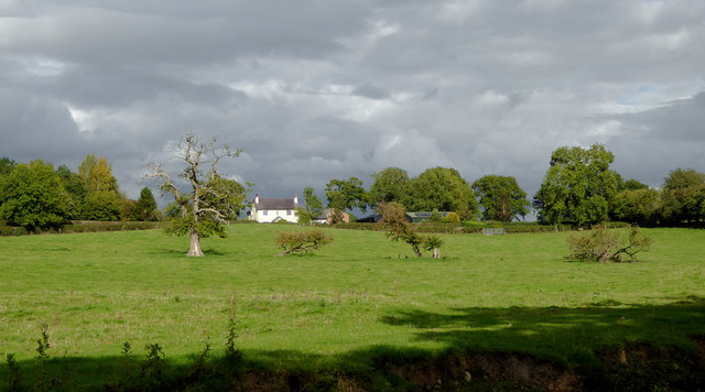 Pasture near Lower Frankton in Shropshire