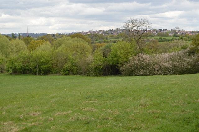 Barn Hill Open Space