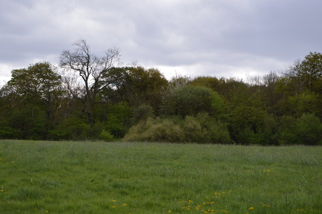 Barn Hill Open Space