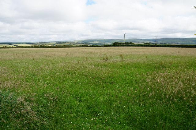 Fallow field off Lydiate Lane