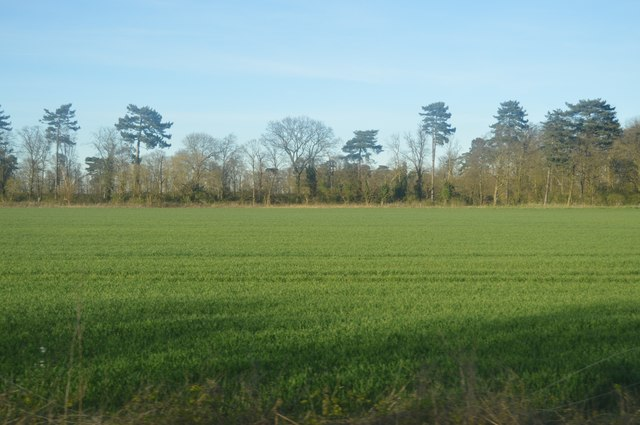 Farmland by the Busway