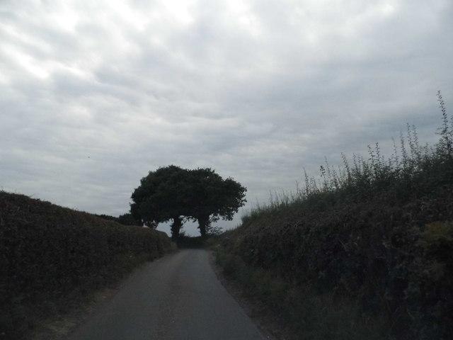Wood End Lane west of Trowley Bottom