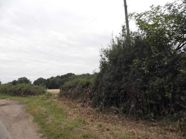 Wood End Lane south of Markyate