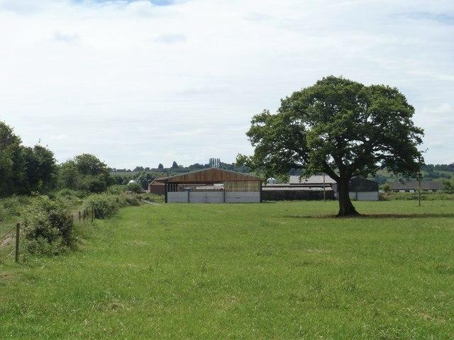 Farm and tree
