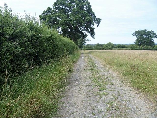 Track to Prater's Lane