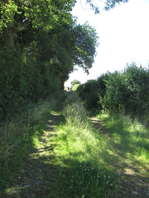 Track  at  western  edge  of  Kay's  Wood