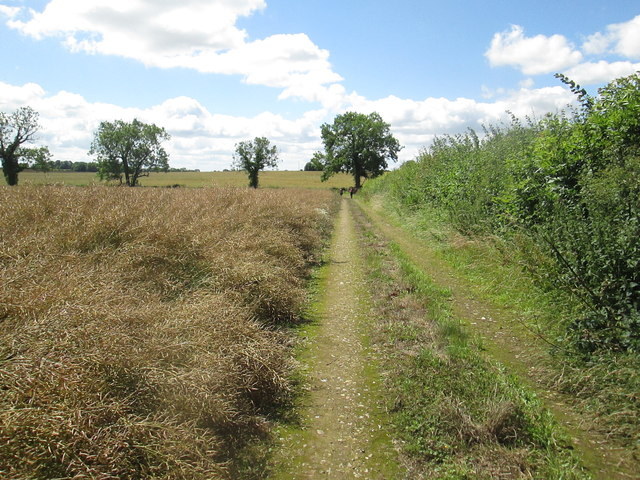 Field  edge  track  of  footpath  to  Greenland  House  Farm