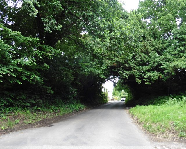 Minor road to Odcombe