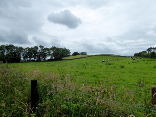 A dark cloud, Loughmuck (Alcorn)