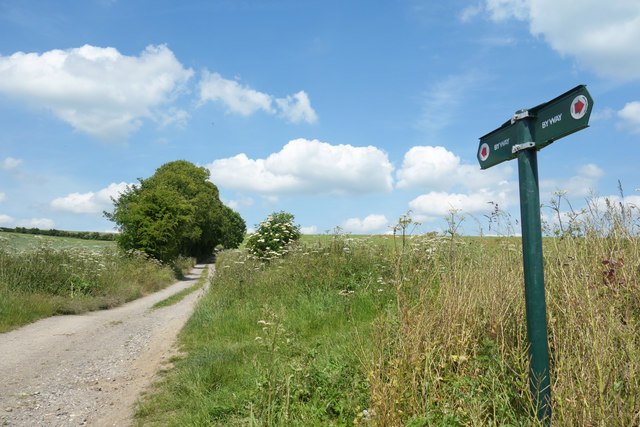 Byway near Maidencourt Farm