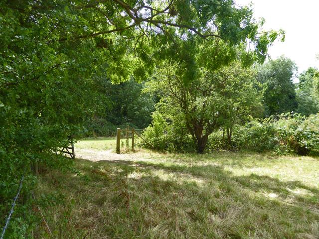 Gateway between fields