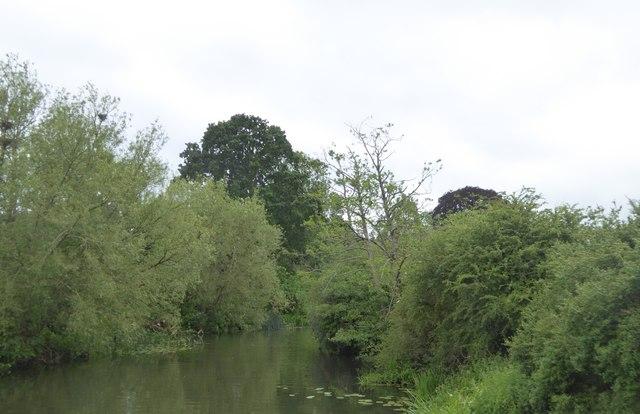 River Avon, Staverton