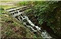 SX8778 : Cascade, Ugbrooke Park by Derek Harper