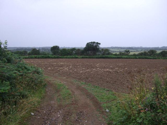 Farm tack and field