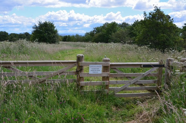 Gate and path, Bowden Common