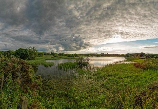 Lochan by Carse Wood