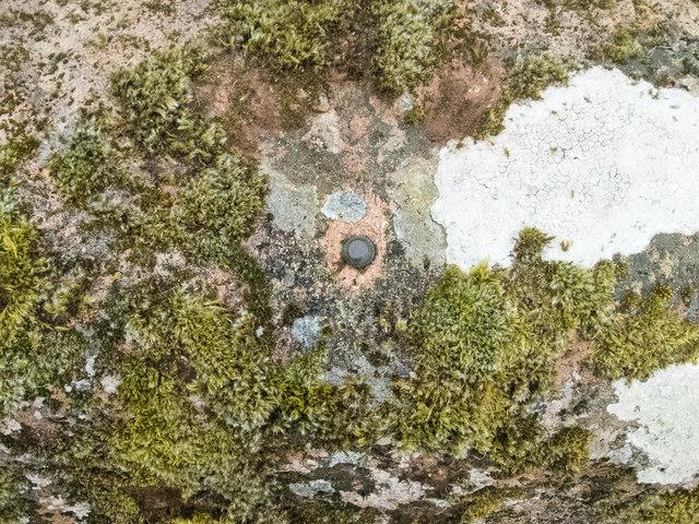 Benchmark on a rock