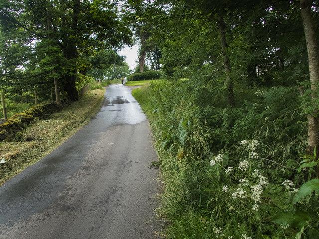Road on Lismore