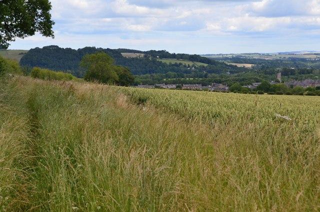 Fieldside path to Newtown St Boswells