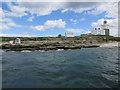 NU2904 : Coquet Island by Hugh Venables
