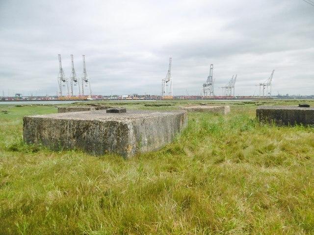 Marchwood, defences