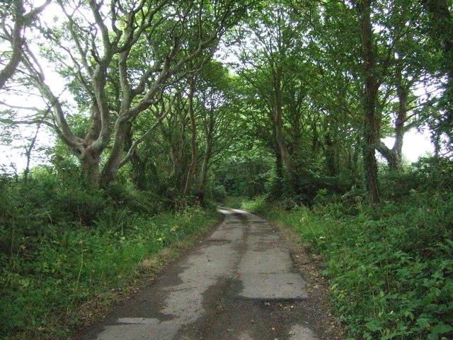 Track (bridleway) to Tredrea Manor