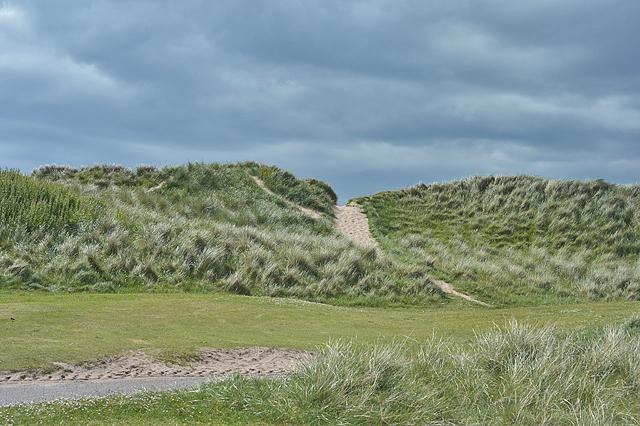 Dunes, Big Sand
