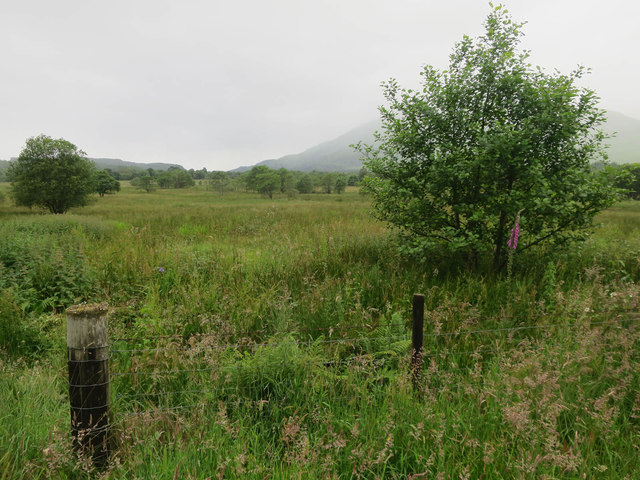 Fields by River Orchy
