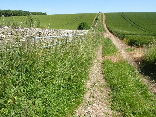 Field headland track