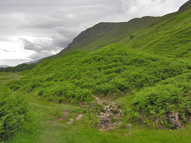 Stream on the Slioch path