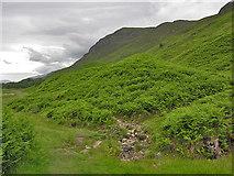 NH0362 : Stream on the Slioch path by Nigel Brown