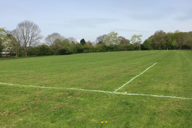 Playing field, Chadwick End