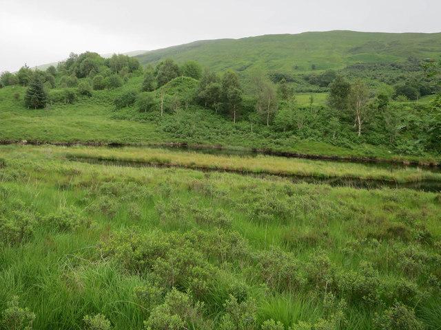 Duck ponds in Glen Strae