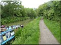 ST8259 : Canal towpath on edge of Bradford-on-Avon by David Smith