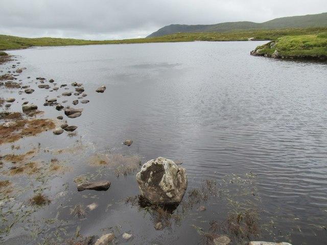 Part of shoreline of Dubh Lochan above upper Speyside