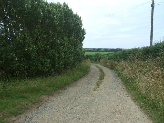 Track to Westmoor
