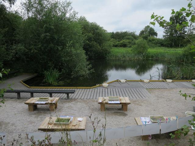 Pond dipping area, Fairburn Ings