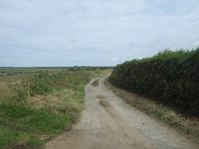 Track (footpath) to Bosanketh Farm