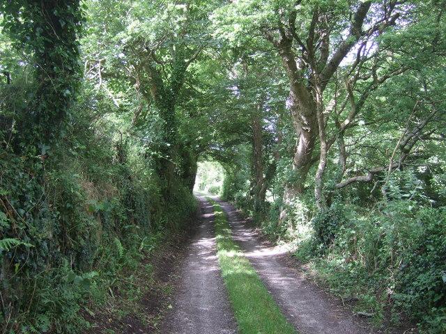 Track to Penrose Farm