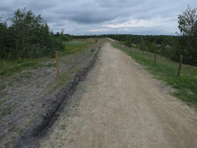 Reserve path, Fairburn Ings