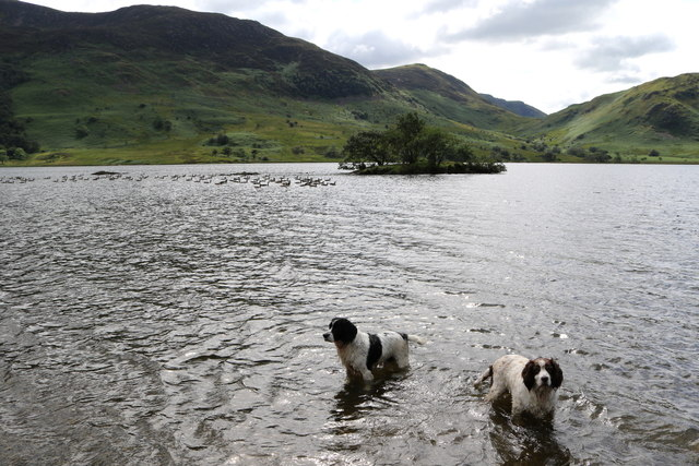 That's better! Cooling off in Crummock Water