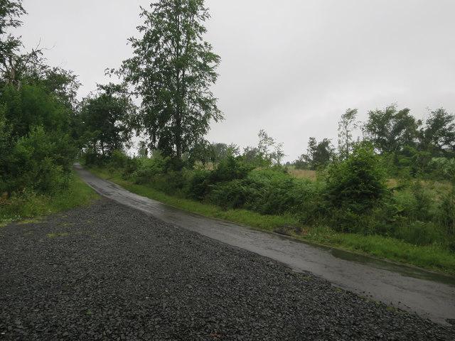 Minor road past Dipton Wood