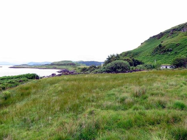 Marshy land on north Kerrera