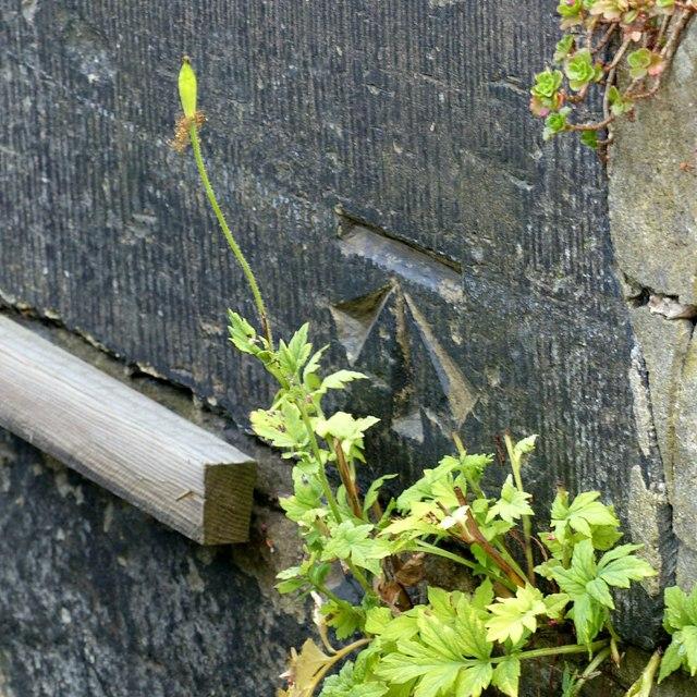Bench mark, 21 Cheapside, Belper