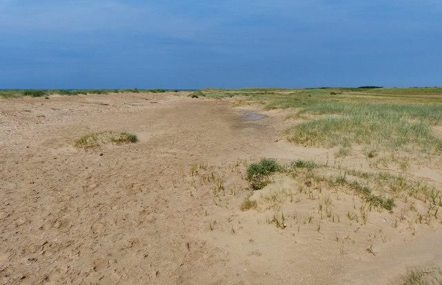Dunes near the sea at Flaxley